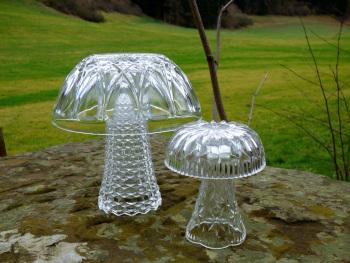 yvonne mushroom art